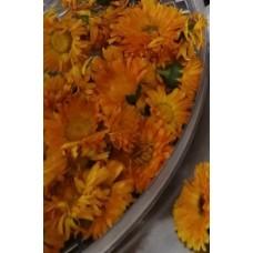 Měsíček lékařský květ CZ-BIO-002 sušený , 100g